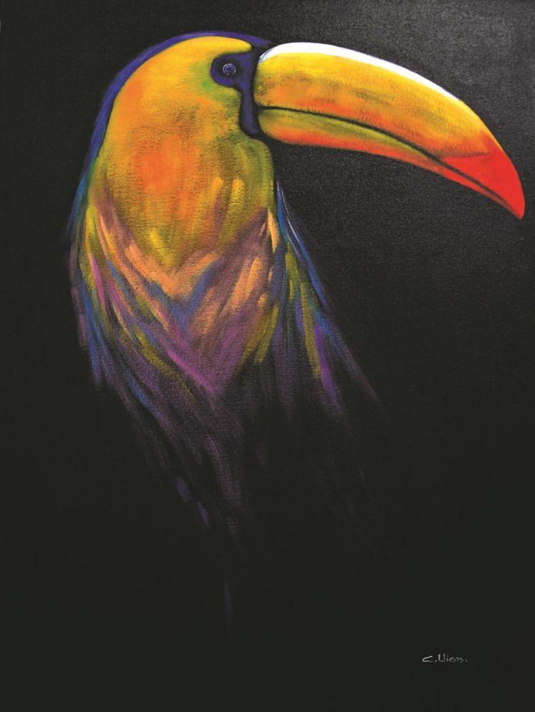 Toucan Noir Canvas Art