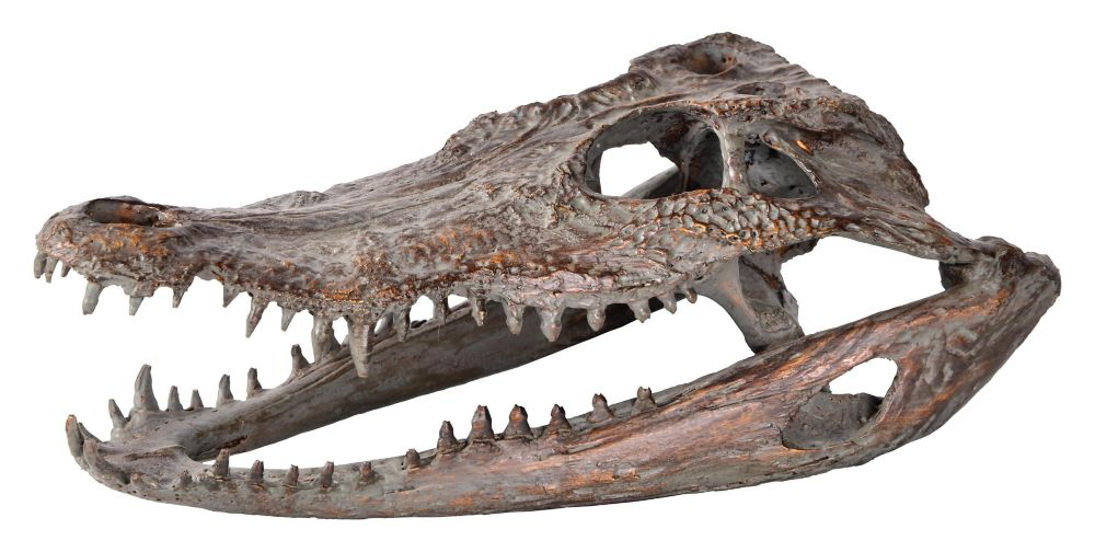 Crocodylus niloticus statue
