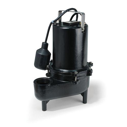 ECOFLO Pompe deaux dégout, 6/10HP, fonte de qualité sup., 9900gal/h, interrupteur à flotteur attaché