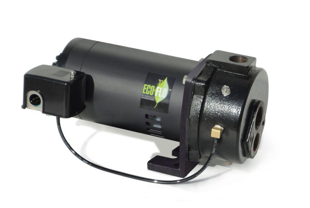 Pompe à jet convertible pour puits, 1HP, fonte, avec éjecteur
