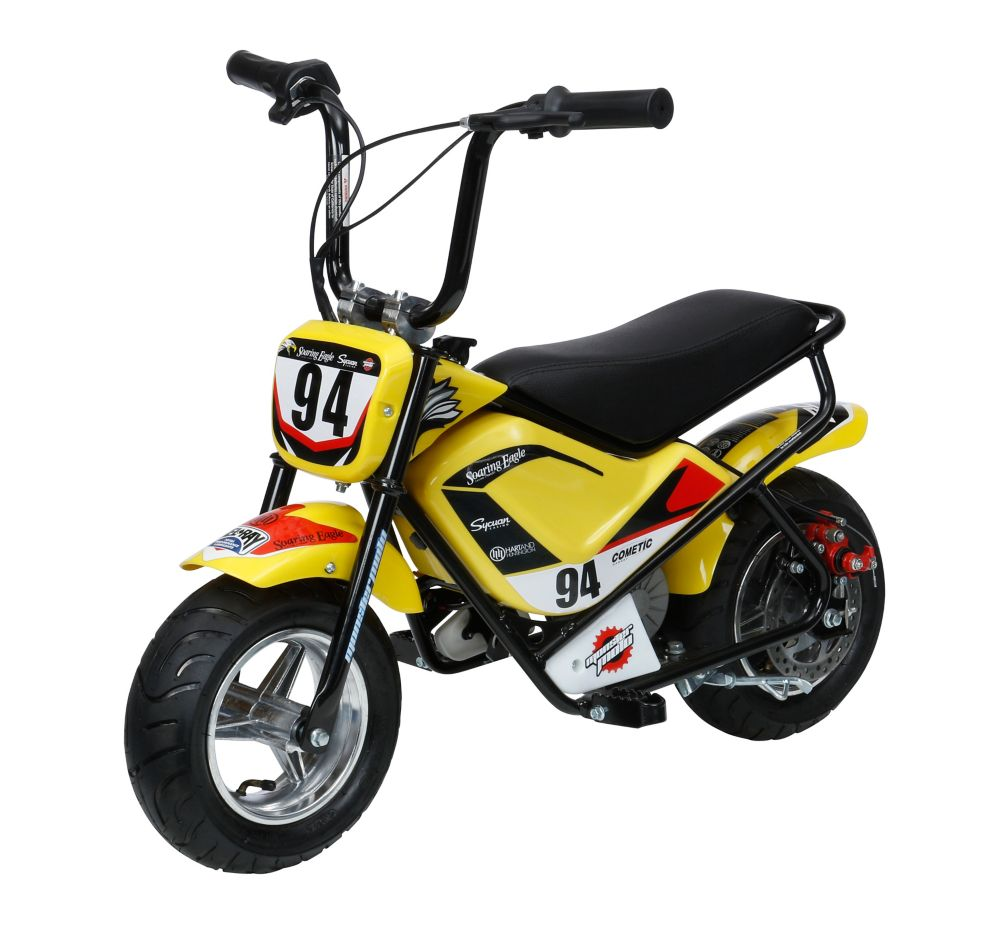 Youth Mini Bike, electric 250 watts