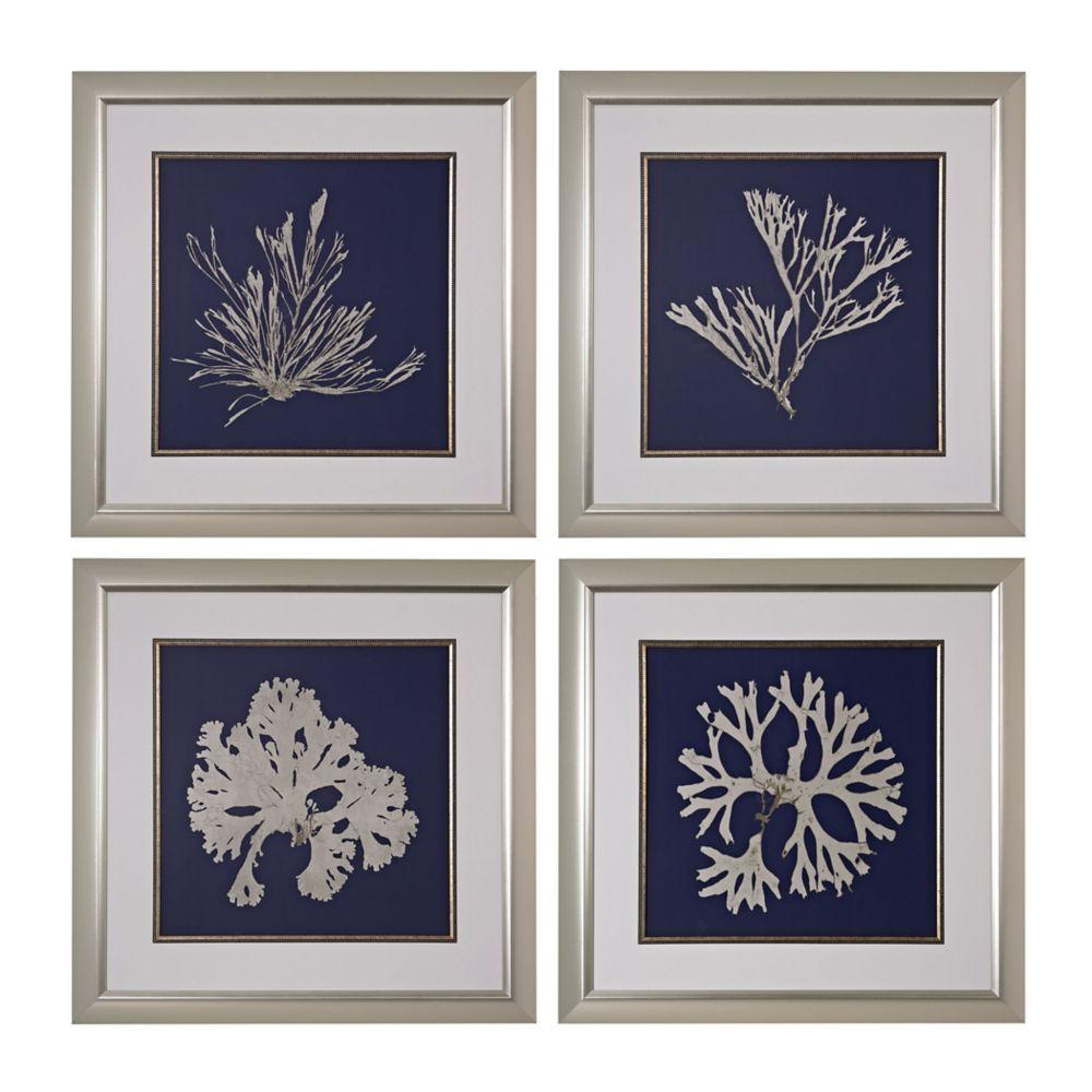 Algues sur marine I, II, III, IV - Impression fine d'art giclée sous verre