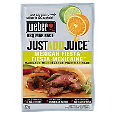 Just Add Juice 32g Mexican Fiesta Marinade Mix