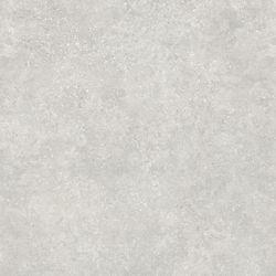 Lifeproof Starry Light 16-inch x 32-inch Luxury Vinyl Tile Flooring (24.89 sq. ft. / case)
