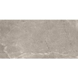 Enigma 12-inch x 24-inch Alpina Argento Rectified Porcelain Tile (15.5 sq. ft. / case)
