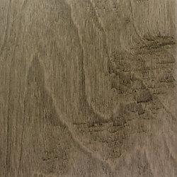 Home Decorators Collection Miramonte Birch Hardwood Flooring (Sample)