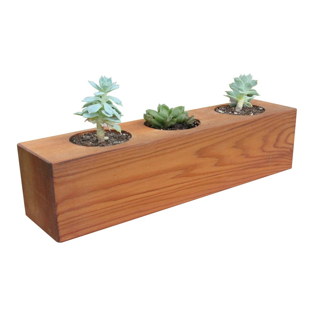 Gronomics 4-inch x 4-inch x 16-inch 3-Hole Succulent Planter