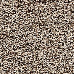 Beaulieu Canada True Affection - Hickory - Carpet per Sq. Feet