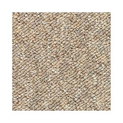 Beaulieu Canada Kinder - Tzigane Carpet - Per Sq. Feet