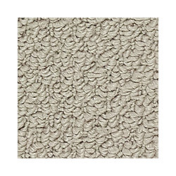 Beaulieu Canada Entrancing - Semitone Carpet - Per Sq. Feet