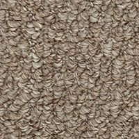 Bistre Brown Carpet