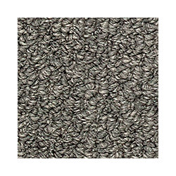 Beaulieu Canada Entrancing - Ravine Grey Carpet - Per Sq. Feet