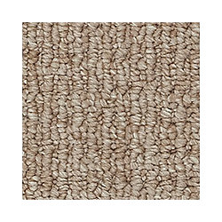 Beaulieu Canada Ravishing - Stone Carpet - Per Sq. Feet