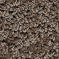 Realistic - Earthy Carpet - Per Sq. Feet