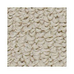 Beaulieu Canada Shebang - French Leather Carpet - Per Sq. Feet