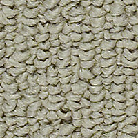 Shebang - Squash Skin Carpet - Per Sq. Feet