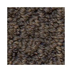 Beaulieu Canada Dardanelle - Cabriolet Brown Carpet - Per Sq. Feet