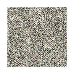 Beaulieu Canada Denby II - Native Land Carpet - Per Sq. Feet