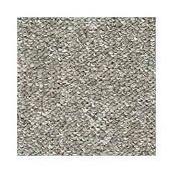 Beaulieu Canada Denby II - Native Land Carpet - Per Sq. Feet