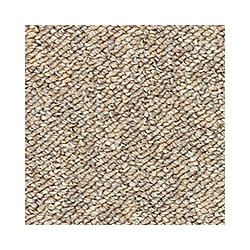 Beaulieu Canada Denby II - Tzigane Carpet - Per Sq. Feet