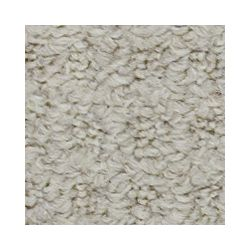 Beaulieu Canada Attimo - Brown Bag Carpet - Per Sq. Feet