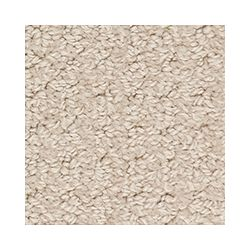 Beaulieu Canada Dramatic - Milky Beige Carpet - Per Sq. Feet
