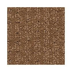 Beaulieu Canada Dramatic - Anise Seed Carpet - Per Sq. Feet