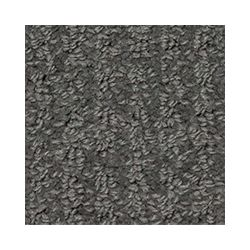 Beaulieu Canada Dramatic - Midnight Train Carpet - Per Sq. Feet