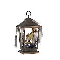 Squelette de corbeau d'Halloween animé dans une lanterne à DEL