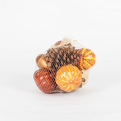 Holiday Accent Harvest Pumpkin Vase Filler In Mesh Bag 3 Assorted