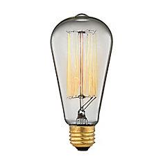 Ogden 60W Incandescent A19 Vintage Filament Light Bulb
