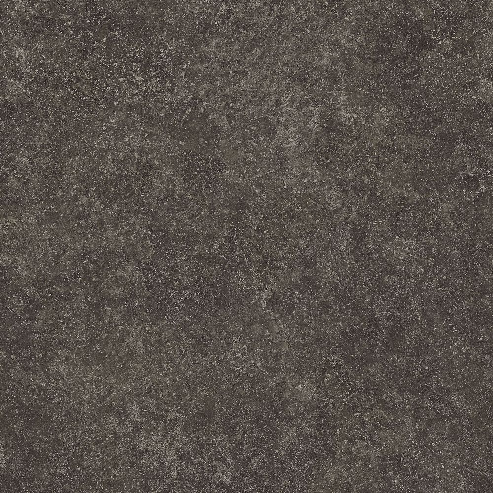 Lifeproof 16 inch x 32 inch Starry Dark Luxury Vinyl Tile Flooring (Sample)