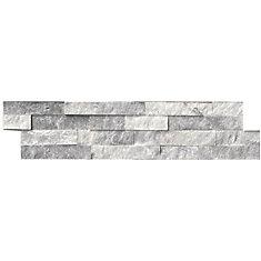 Carreaux de marbre naturel pour murs Alaska Gray de 6 po x 24 po