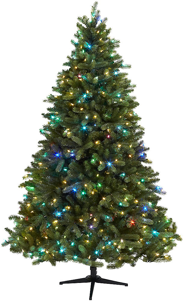 Arbre de Noël Denison à port tombant, 560 lumières à DEL Color Show, 1 867 ramifications, 7,5 pi