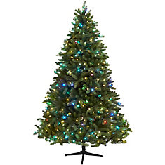 7.5 ft Downswept Denison Quick Set Tree