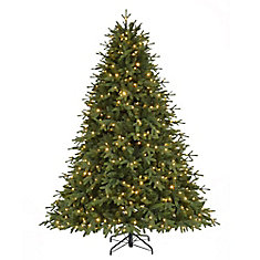 7.5 ft Monterey Fir Quick Set Tree