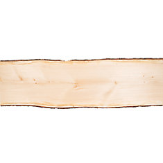 Live Edge Pine Slab 6 ft ( 19 inch to 24 inch wide )