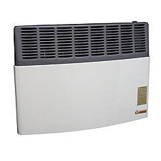 direct vent btu heater natural gas