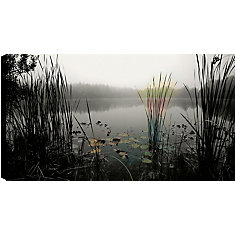 Bushes in the Lake' Photographic Print on Wrapped Canvas