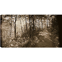 Art Maison Canada Walk between the Bushes' Photographic Print on Wrapped Canvas