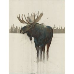 Art Maison Canada Golden Moose' Wall Art on Wrapped Canvas