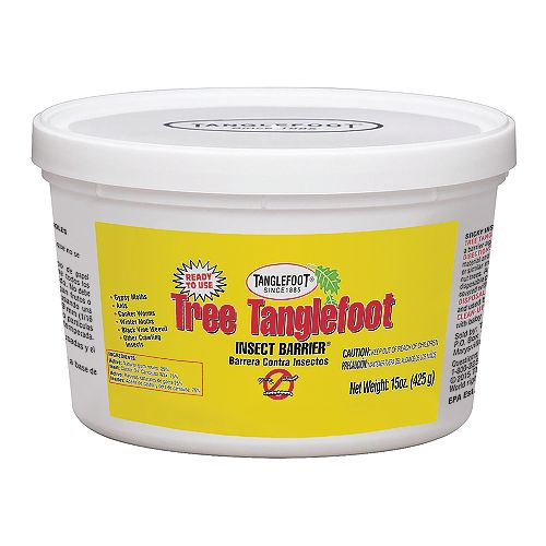 Contec Tree Tanglefoot Insect Barrier Tub