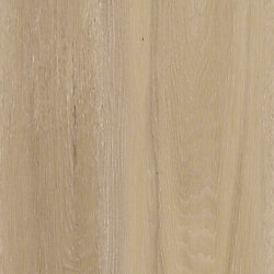 Lifeproof Cedar River Oak 8.7-inch x 47.6-inch Luxury Vinyl Plank Flooring (20.06 sq. ft. / case)