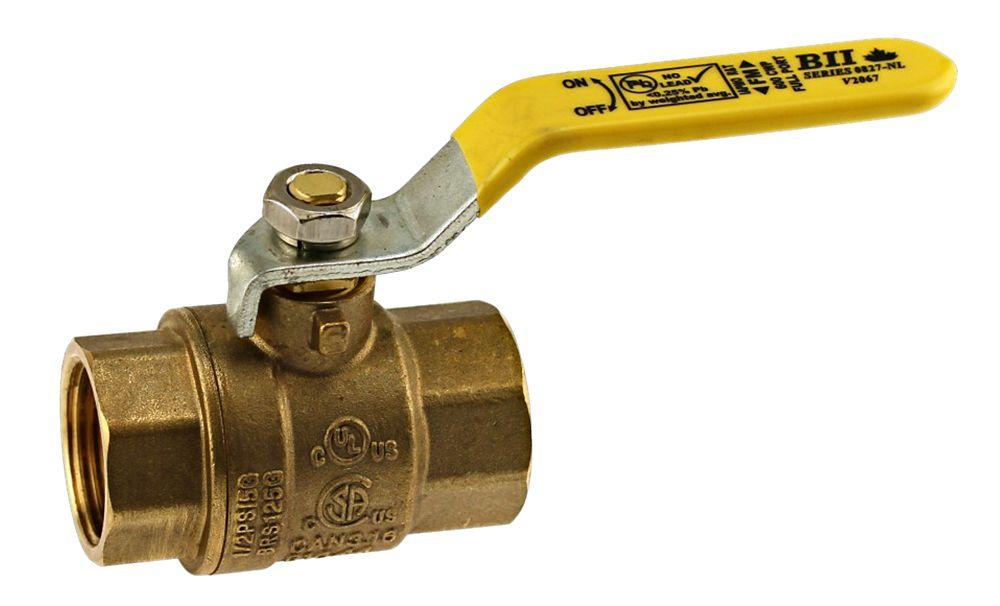 Boshart Canada Jag Plumbing Packs -3 Inch FPT Brass Ball Valve