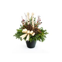 Brookdale Treeland Nurseries Large Birch Outdoor Arrangement - Gold