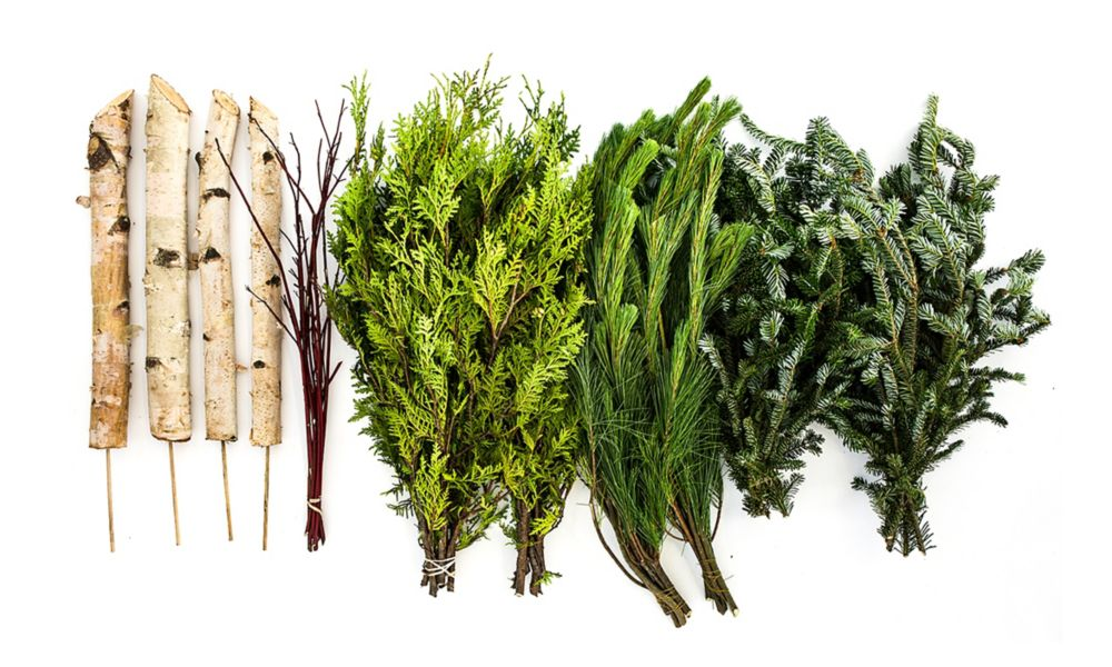 Brookdale Treeland Nurseries DIY Evergreen Urn Kit (Makes 2 Urn Arrangements)