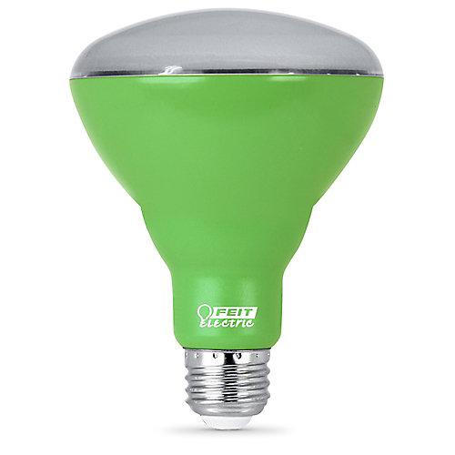 Ampoule DEL pour croissance de plantes BR30 spectre complet équivalente à 65 w