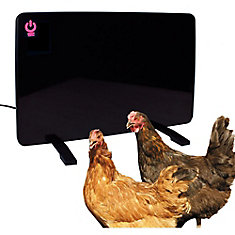 Chauffe Coope Coope Coope Chauffage 200 Watts Pour Poussins Et Poulets
