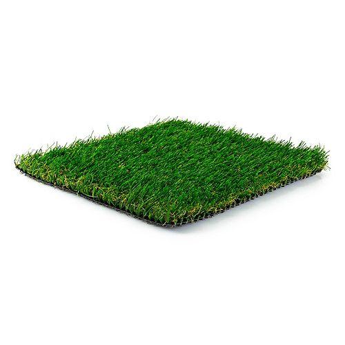 Greenline Classic Premium 65 Fescue Artificial Grass for Outdoor Landscape (Sample)