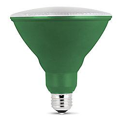 Feit Electric Ampoule DEL à lumière pour croissance de plantes PAR38 Spectre Complet Blanc Doux Équivalente à 75W